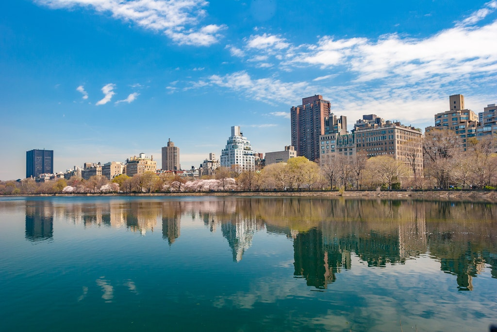 irish-new-york